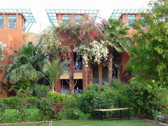 Sheraton Miramar Resort El Gouna: Hotel area.