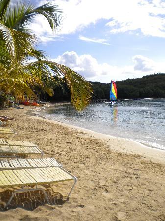 Bolongo Bay Beach Resort: Resort's beach
