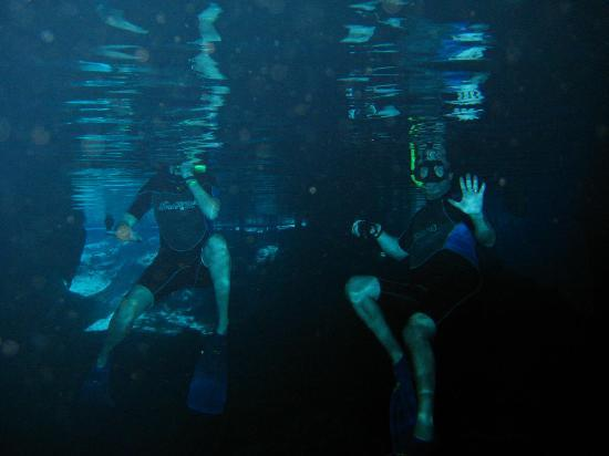 Edventure Tours: snorkeling in a cenote