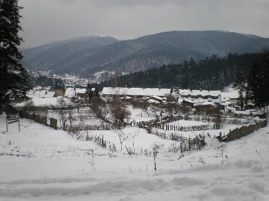 Vila Oti Dor Busteni: Busteni March 2010