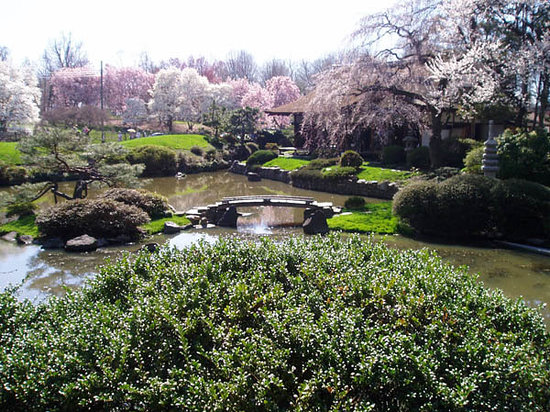 Photo of Historic Site Shofuso Japanese House and Garden at Horticultural And Lansdowne Drs., Philadelphia, PA 19131, United States
