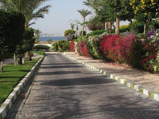 Tiran Island Hotel: walk down to beach