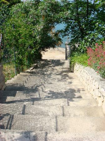 Vila Stosic: Treppe
