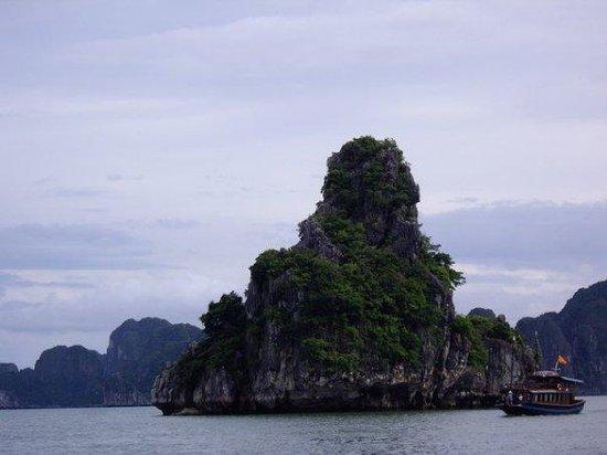 Halong Bay, Vietnam: 獨島