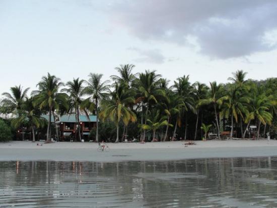 Playa Samara-billede