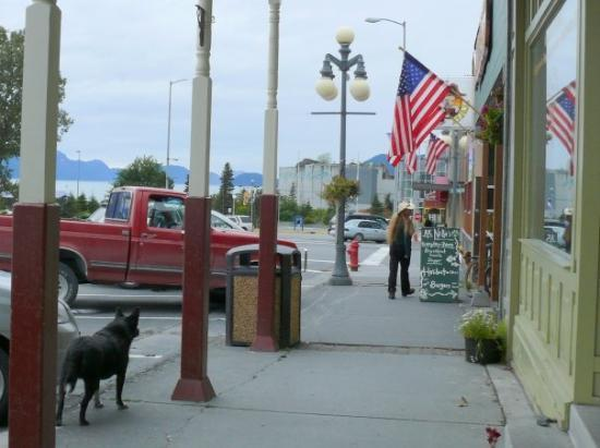 Downtown Seward, no leashes required