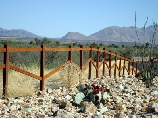Tubac, Аризона: No, this fence is not the boarder.  It's just a cow pasture.