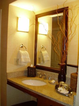 Canyon Ranch in Lenox : My pretty bathroom