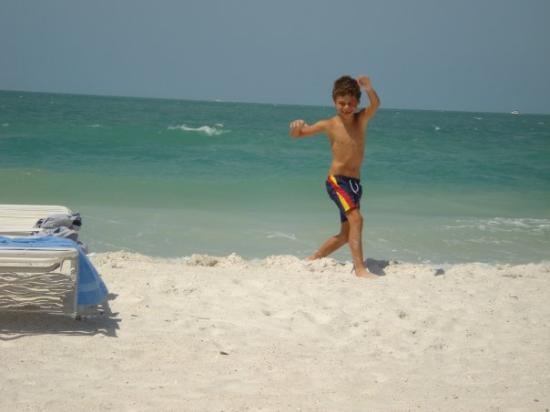 Sarasota, FL: White sand-Lido Beach