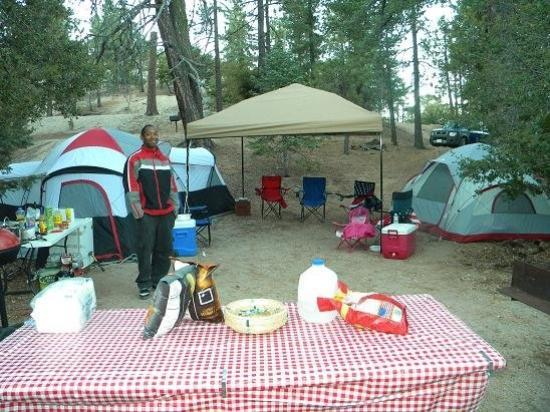 Idyllwild, CA: our campsite
