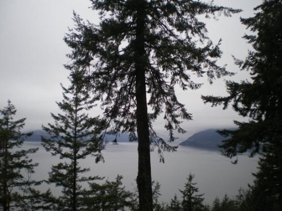 Whistler, Canada: Along Sea to Sky Hwy. 99