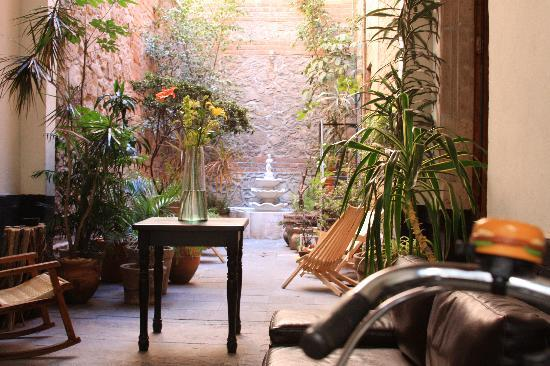 El patio 77, first eco-friendly B&B in Mexico City: Entrance