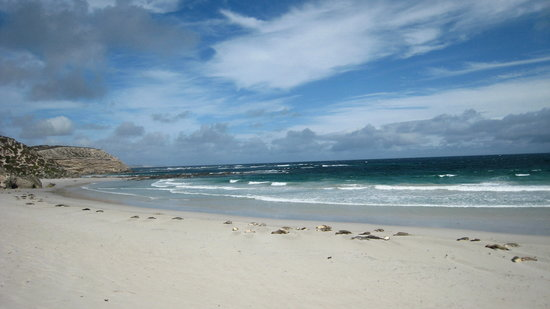 Exceptional Kangaroo Island Review