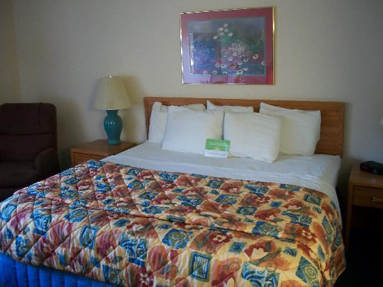 La Quinta Inn Birmingham / Cahaba Park South: King size bed in room