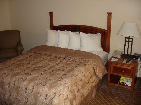 Staybridge Suites Chantilly Dulles Airport: Bed