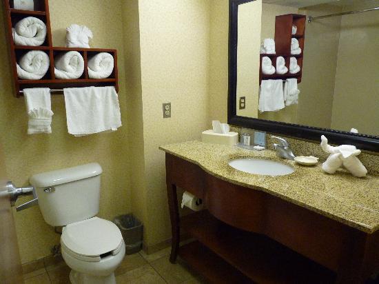 Hampton Inn & Suites Las Cruces I-25: Bathroom