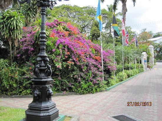 Sandals Halcyon Beach Resort: Halcyon Entrance