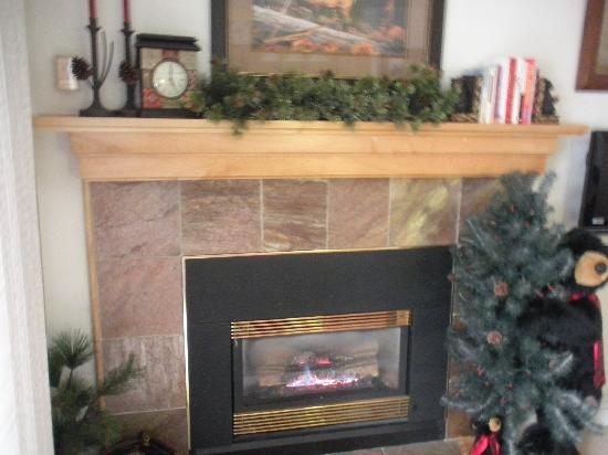 Inner Circle Condominiums: Nice Fireplace To Relax By