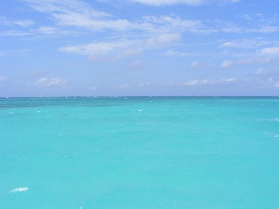 Sandals Royal Bahamian Spa Resort & Offshore Island: The water is truly this beautiful!