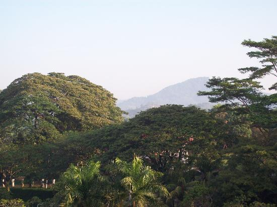 Klana Resort Seremban: view outside the hotel room window