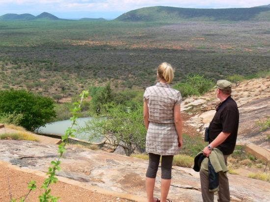 Jerenuk Porn Picture Of Samburu National Reserve