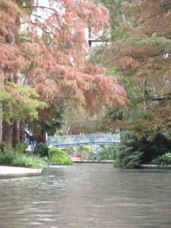 Bilde fra River Walk