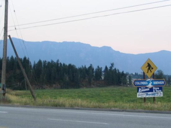 Creston, Kanada: Mountians, beauty, beer? What more could you want.