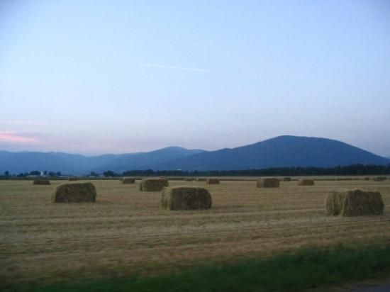 Creston Fall Fields