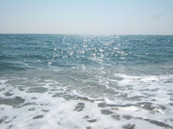 Canet de Mar Photo