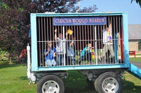 Circus World: take the keys and lock the wild animals up