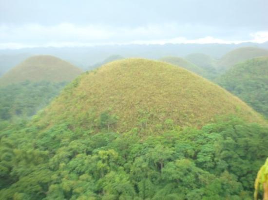 Bilde fra Chocolate Hills