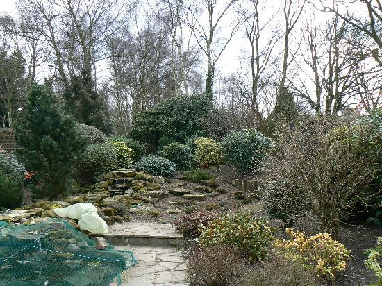 Lyth Hill House: Rear garden area