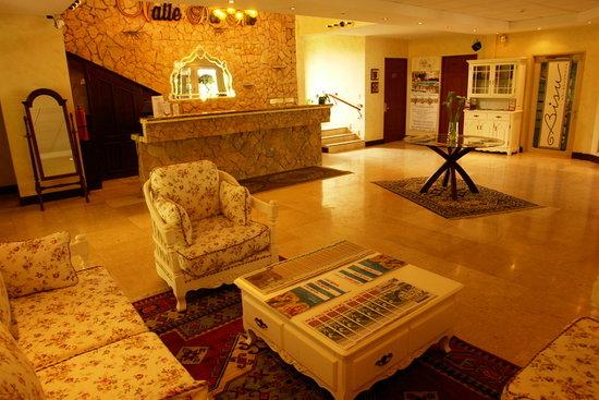 Hotel Valle del Rio: Lobby