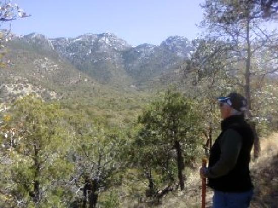 Madera Canyon: View from trail