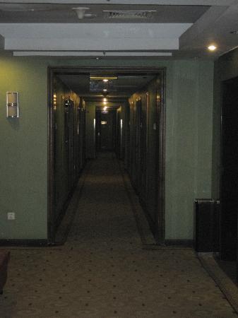 Wancheng Huafu International Hotel: walkway