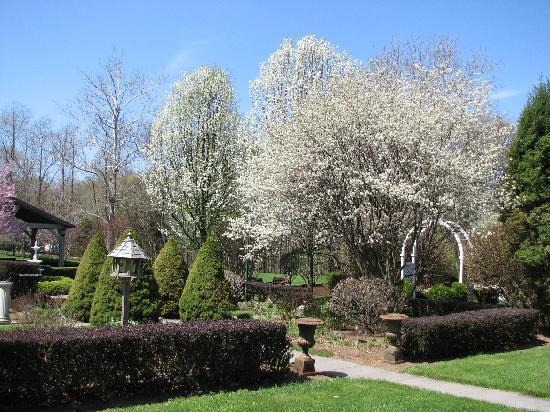 Bykenhulle House B&B: Knot Garden in May