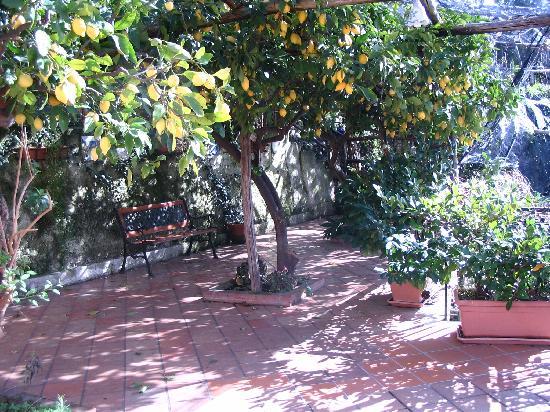 Free Holiday Bed & Breakfast: la terrazza della camera