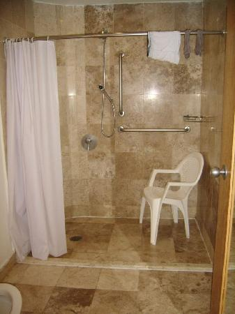 One Acapulco Costera: bathroom in the room for disabled