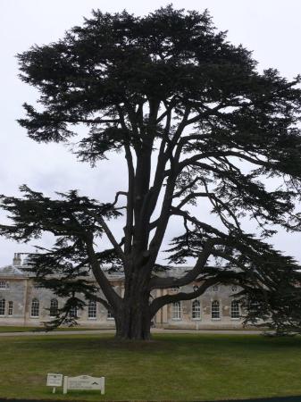 Woburn Abbey and Gardens ภาพถ่าย