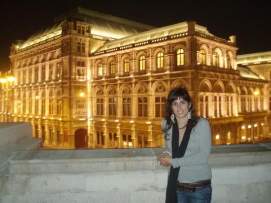 State Opera House: Pano de fundo... Edifício da Ópera de Viena!