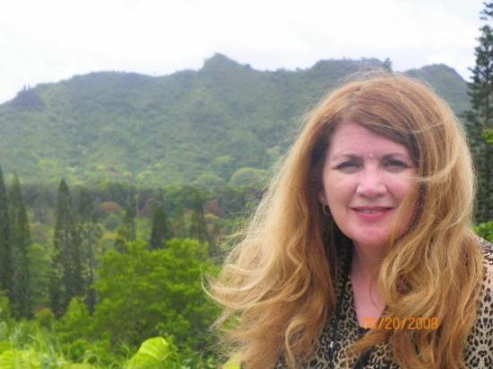 Nuuanu Pali Lookout: Pali Lookout View Looking Northward