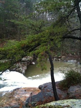 Little River Photo