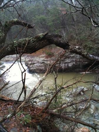 Bilde fra Little River