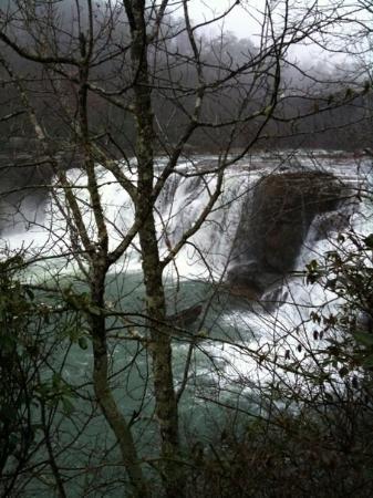 Little River, ألاباما: Little River falls canyon