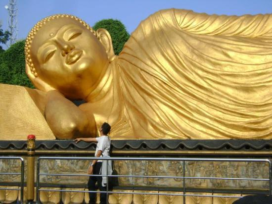 Mojokerto, Indonesia: Look at me Buddha Julai...