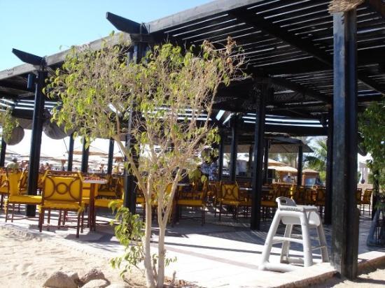Bilde fra Sharm El Sheikh Marriott Resort