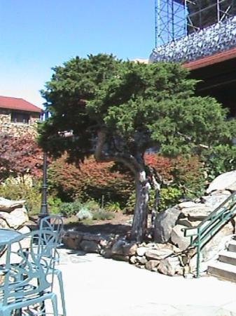 The Omni Grove Park Inn Spa Foto