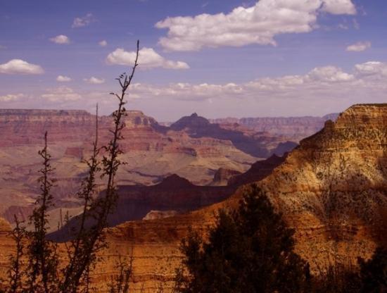 Grand Canyon South Rim: Grand Canyon