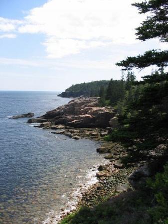 Acadia National Park, ME: Rocky coast in Acadia. One of my favorite digital pics.