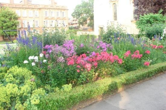 Somerville College: Just some of the gardens at Somerville
